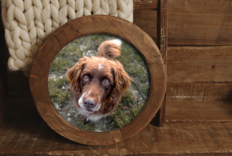 rundes Holzbild in Rahmen